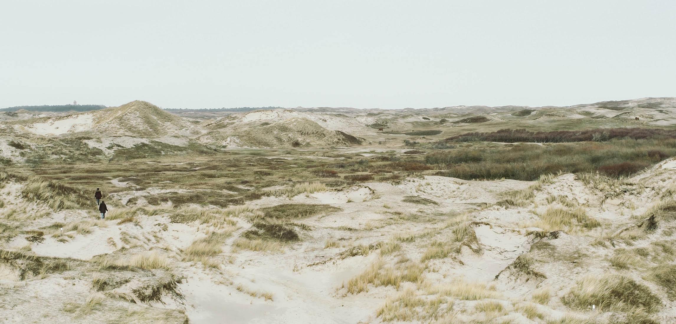 Dünen Landschaft Niederlande Egmond aan Zee Sand grün bedeckter Himmel Jörn Strojny