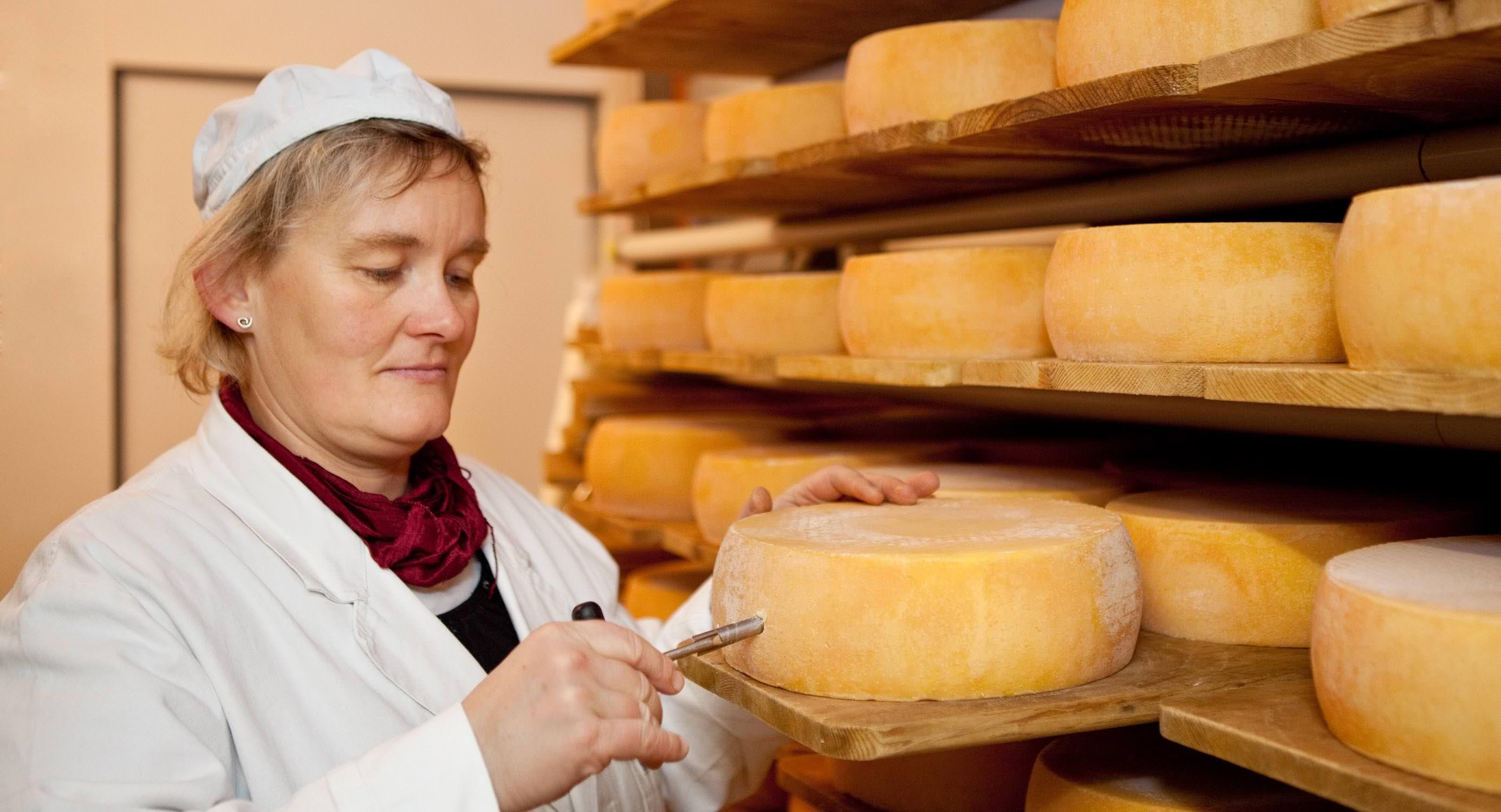 honhardter demeter höfe dorfkäserei geifertshofen käseherstellung Keller Regale qualitätskontrolle leib Reifen Käserei jörn strojny