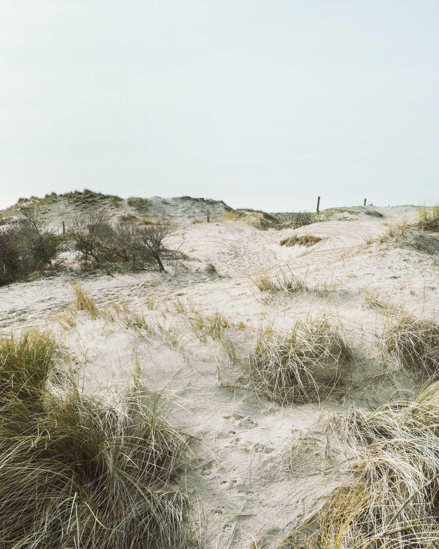 egmond aan zee gras hügel erhebungen landschaft dünen sand himmel niederlande urlaub