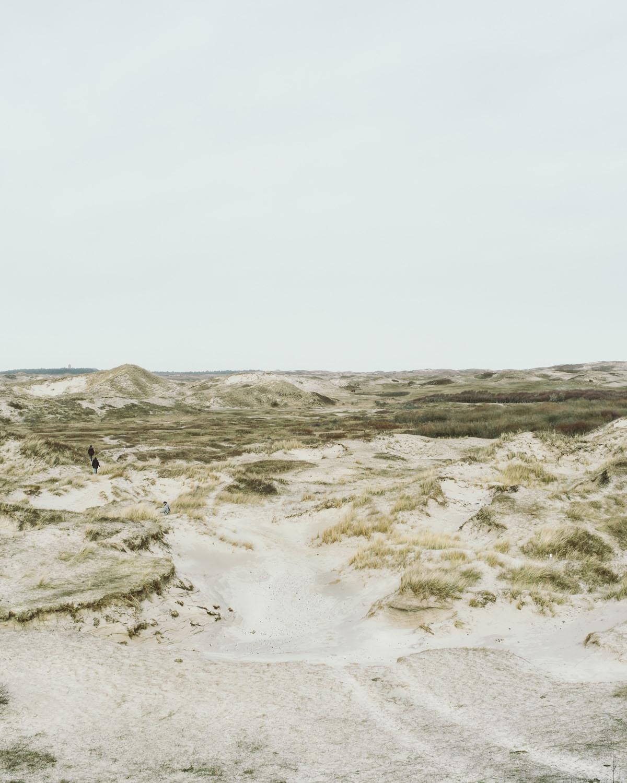 egmond aan zee spuren laufen wandern erkunden landschaft dünen sand himmel niederlande urlaub
