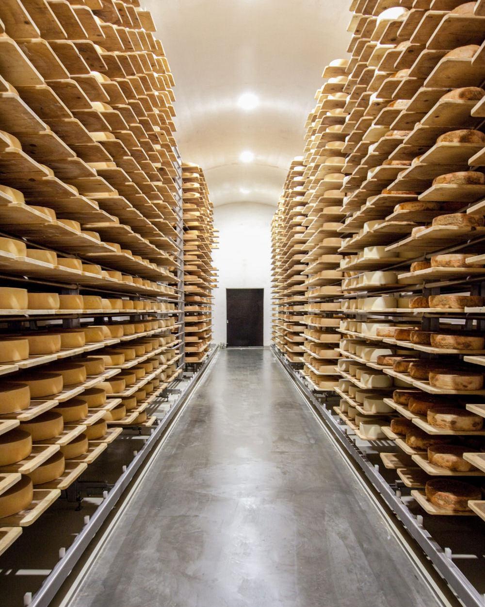 honhardter demeter höfe dorfkäserei geifertshofen käseherstellung Keller Regale heumilch Reifen Käserei jörn strojny